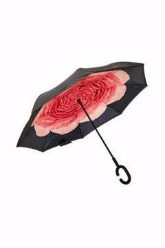 cream Alicia Umbrella